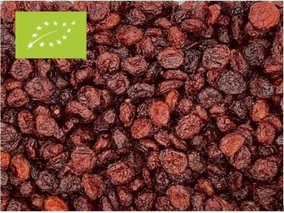 Cranberrys Bio