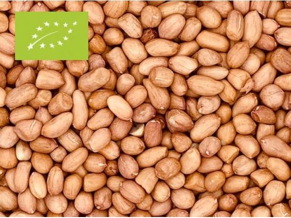 Erdnüsse mit Haut Bio