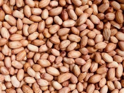 Erdnüsse ganz, roh